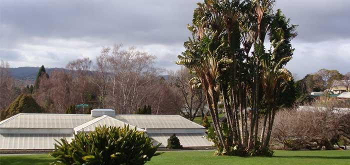 Jardín Botánico de Tasmania